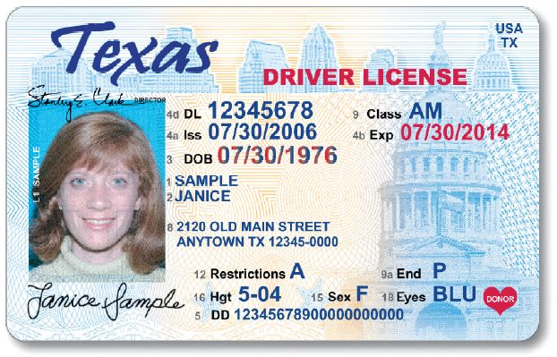 Texas driver license sample